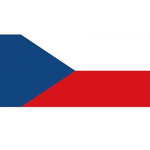 Český language